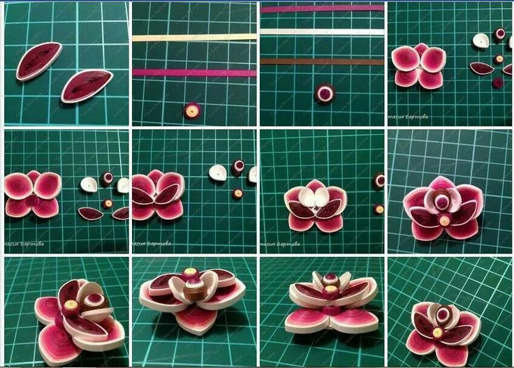 Diy Paper Quilling Flower Tutorial Step By Step Quilling