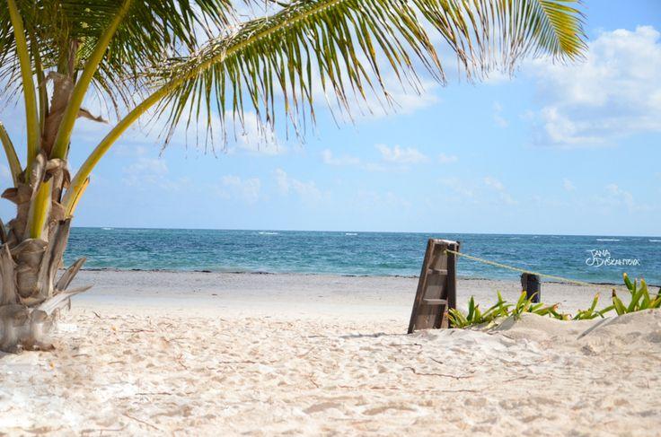 Mexico - Tulum, beach http://janadyskantova.cz/gallery/central-america/