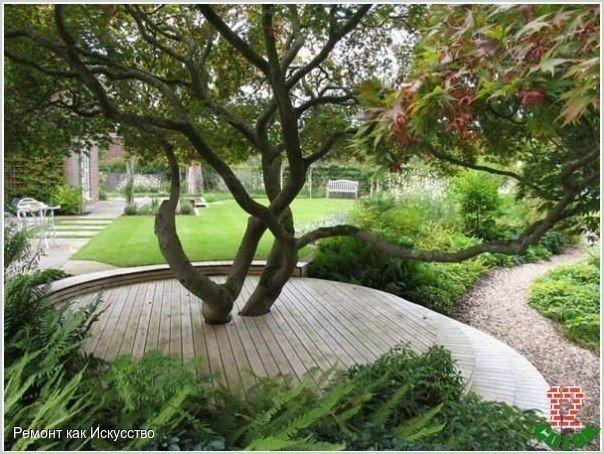 Оформление пространства вокруг деревьев в вашем саду