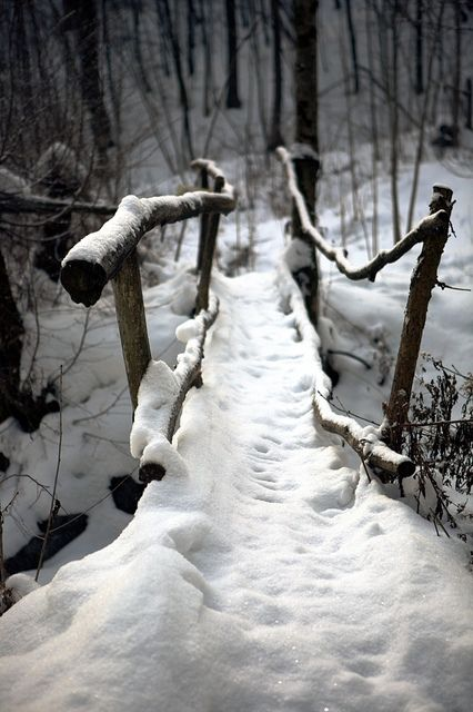 The Path | Flickr - Photo Sharing! /\|B