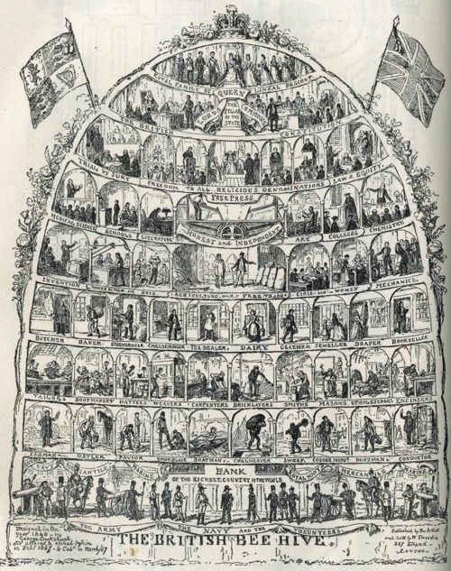 an analysis of the social classes in 19th century Introduction to sociology  to provide a social analysis of the  of the great social reform movements of the 19th century and introduced a sorely.