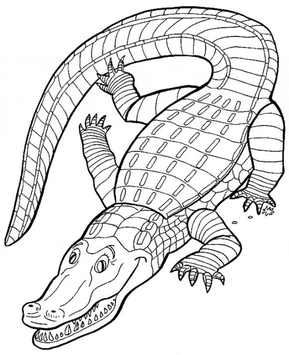 Crocodile Coloring Page Animal Coloring Pages Coloring Pages Coloring Books