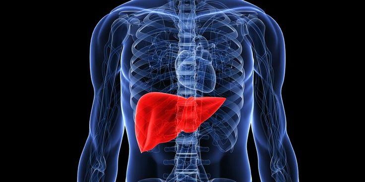 Какви симптоми се появяват при проблем с черния дроб? Намерете и много друга полезна информация на нашият сайт.