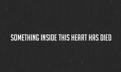 Something inside this heart has died... and sometimes I wish I could join it.