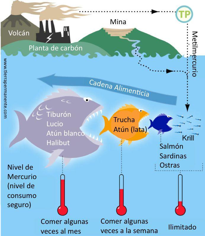 Contaminacion industrial del agua yahoo dating