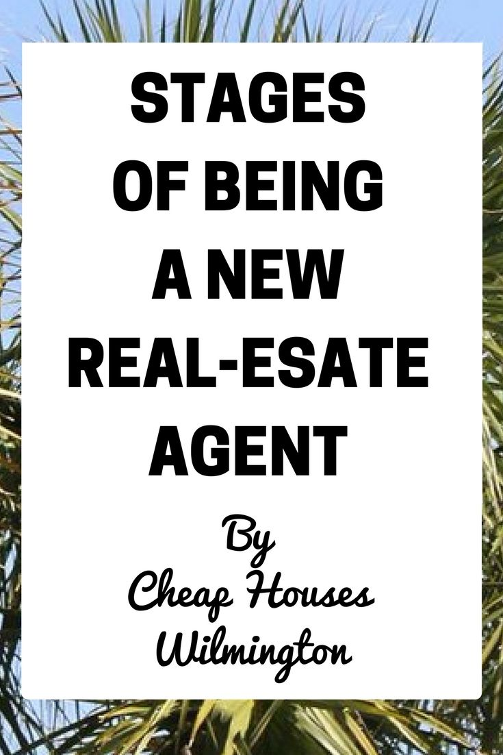 New Real-Estate Agent - First Year Real-Estate