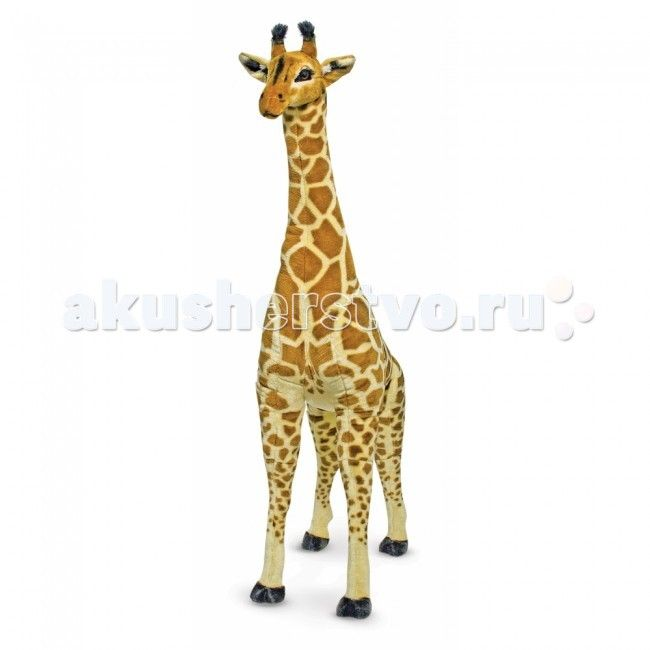 Мягкая игрушка Melissa & Doug Большой Жираф 140 см  Мягкая игрушка Melissa & Doug Большой Жираф 140 см - воистину огромен! Его рост около 140 см. Мягкий плюшевый гигант сделает любой интерьер ярким и необычным, добавит экзотики в детскую комнату.   Жираф сделан с большим вниманием к деталям. Компания Melissa&Doug позаботилась о том, чтобы сделать игрушку максимально похожей на настоящее животное. Малыш сможет поближе познакомиться с этими африканскими животными и обязательно полюбит Большого…