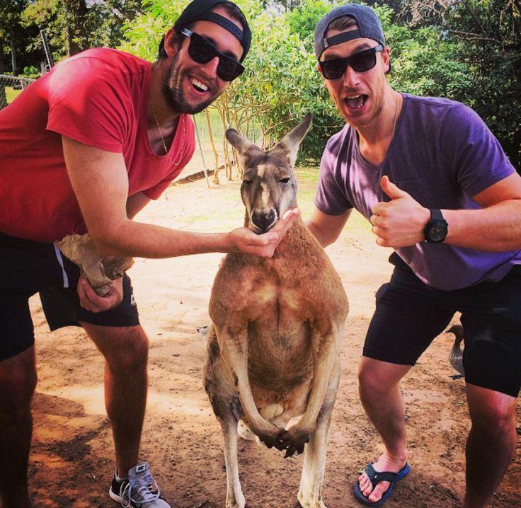 Toronto Maple Leafs: Shawn Matthias and his friend, Steve, feeding a kangaroo