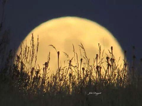 Idaho fall moon