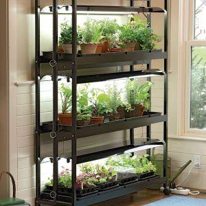 Indoor Plant Shelves Stands