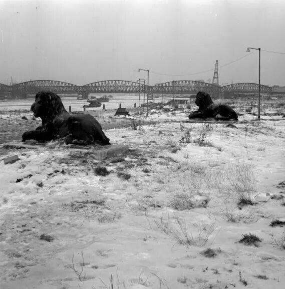 De aanleg van de maasboulevard tussen 1962 en 1966....
