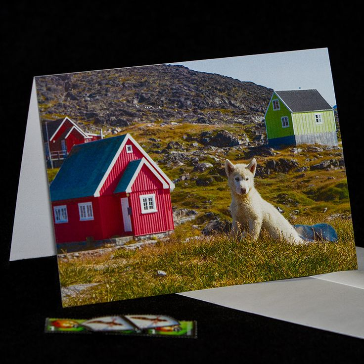 20% off everything - greeting cards & digital downloads! Click here: https://www.etsy.com/ca/shop/TanyaDeLeeuwPhoto?ref=hdr_shop_menu Please repin! Thank you!