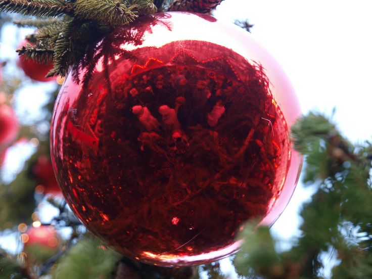 christmas reflected