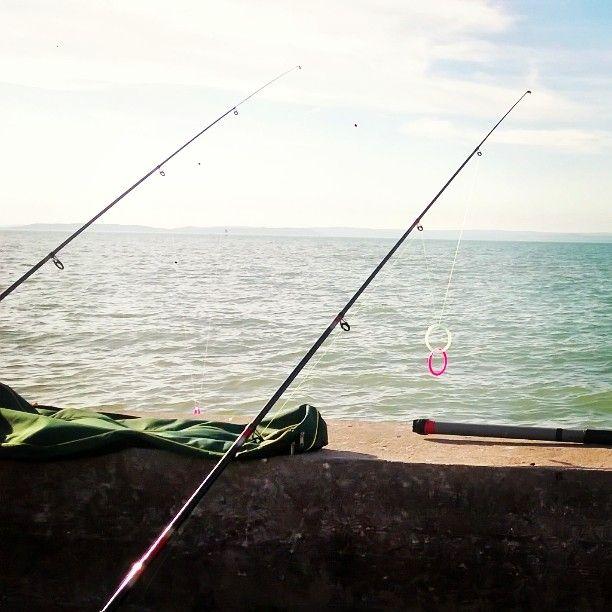 Balaton ❤ #travelphoto #Balaton #holiday #weekend #helloweekend #countrylife #autumn #helloautumn #fishing 🎣
