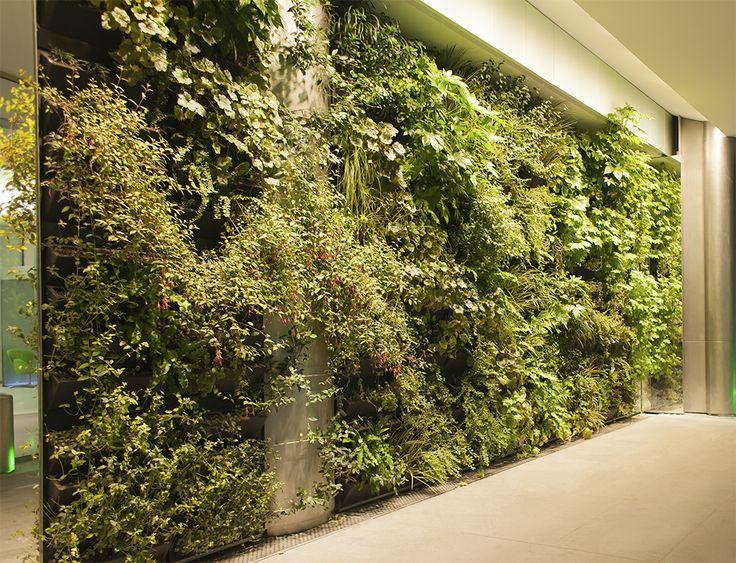 The 319 best Vertical Gardens images on Pinterest   Green walls ...