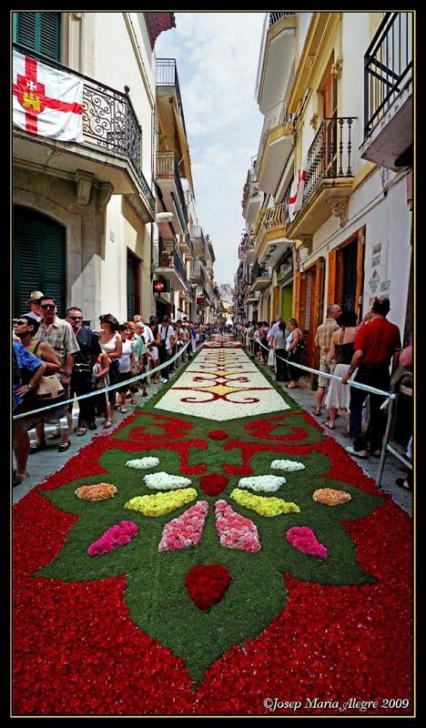 Catifes de flors (Corpus). Sitges. El Garraf, Catalonia