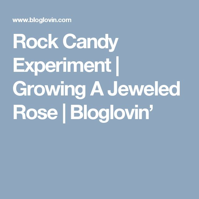 Rock Candy Experiment | Growing A Jeweled Rose | Bloglovin'