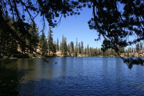 This Lake In Northern California Will Be Your New Favorite Summer Destination