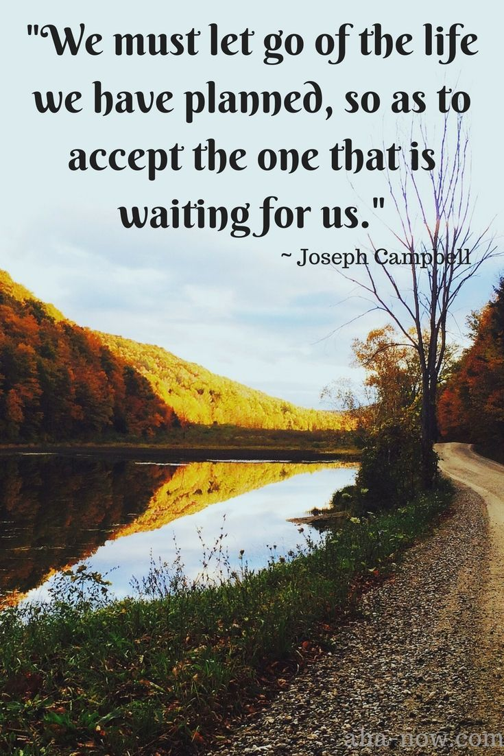"""We must let go of the life we have planned, so as to accept the one that is waiting for us."" ~ Joseph Campbell"