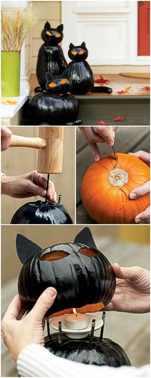 Glossy Black Cats 70 Creative Pumpkin