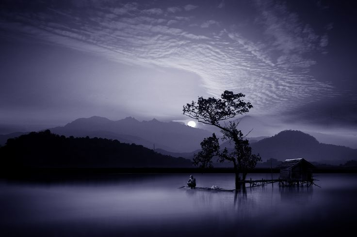 in a blue morning - null