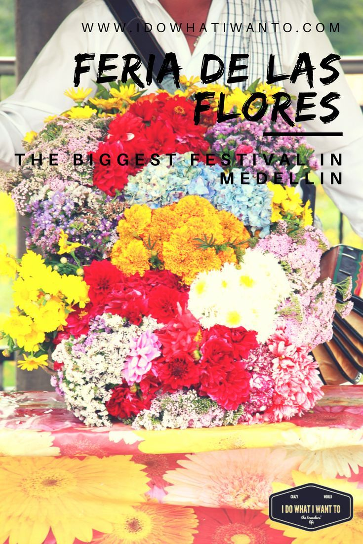 Feria de las Flores, the biggest festival in Medellin full of traditions, smells and colours. Travelling in Colombia. Wanderlust in South America