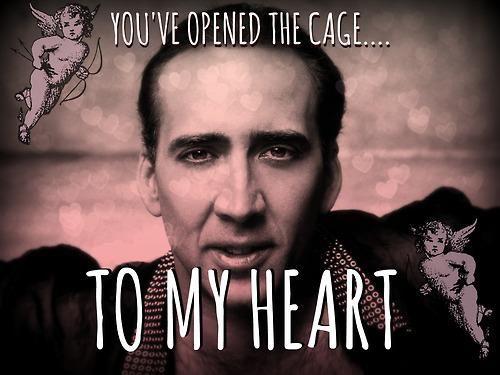 187 best Nicolas Cage\'s face images on Pinterest | Ha ha, Nicolas ...