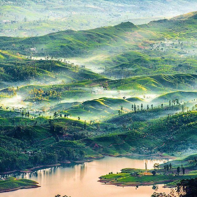 Gorgeous vistas in Sri Lanka. Photo courtesy of olenapetrosyuk on Instagram.
