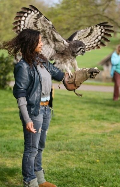 Angel coulby  AND an owl?!! These are a few of my favorite things...