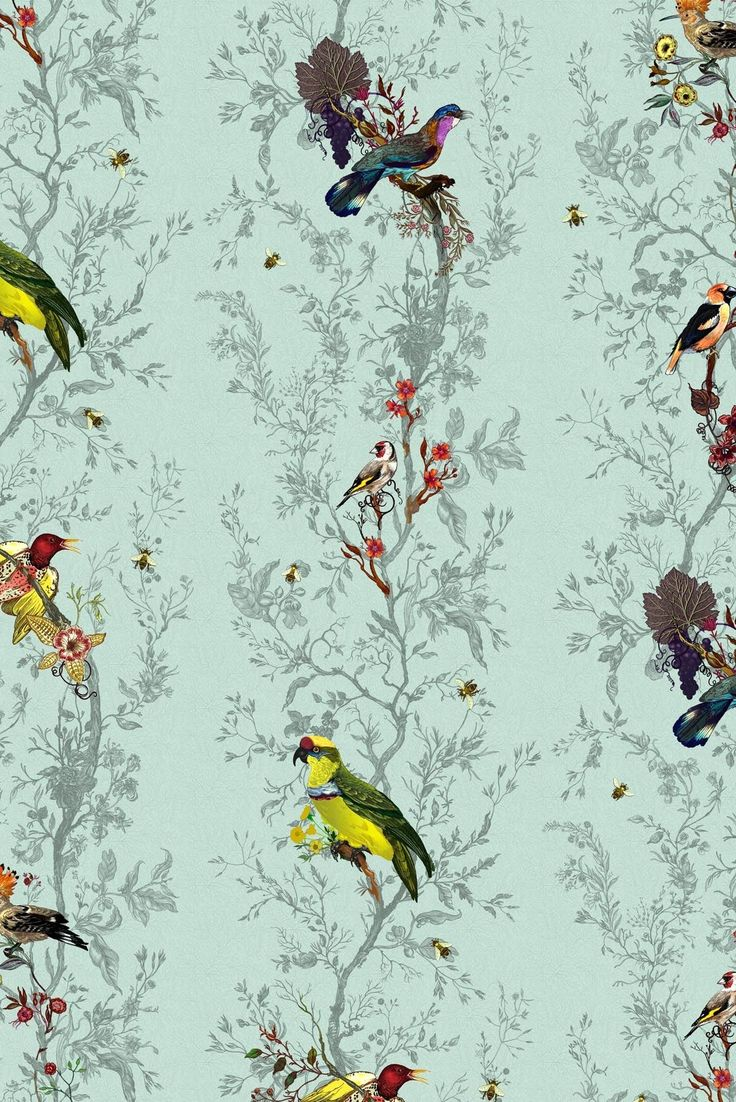 Timorous Beasties Wallcoverings - Birds 'n' Bees wallpaper