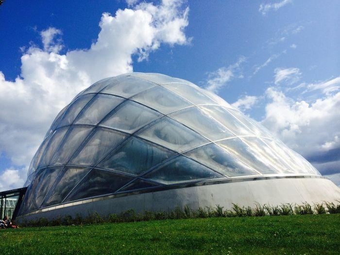 デンマーク オーフス旅行記6 植物園