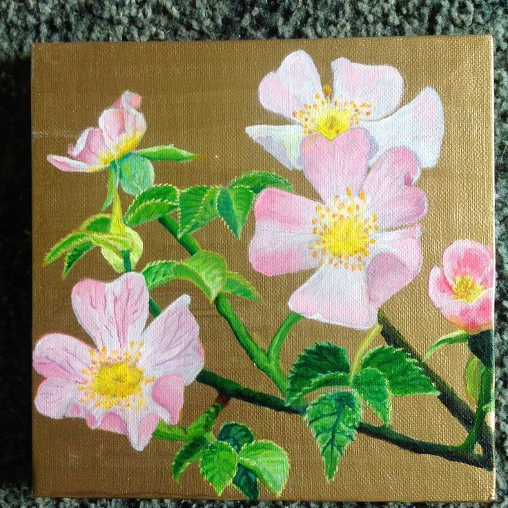 #oilpainting of #dogrose on #walescoastalpath on #gold background 20cm x 20 cm  #flowers #macro #pink