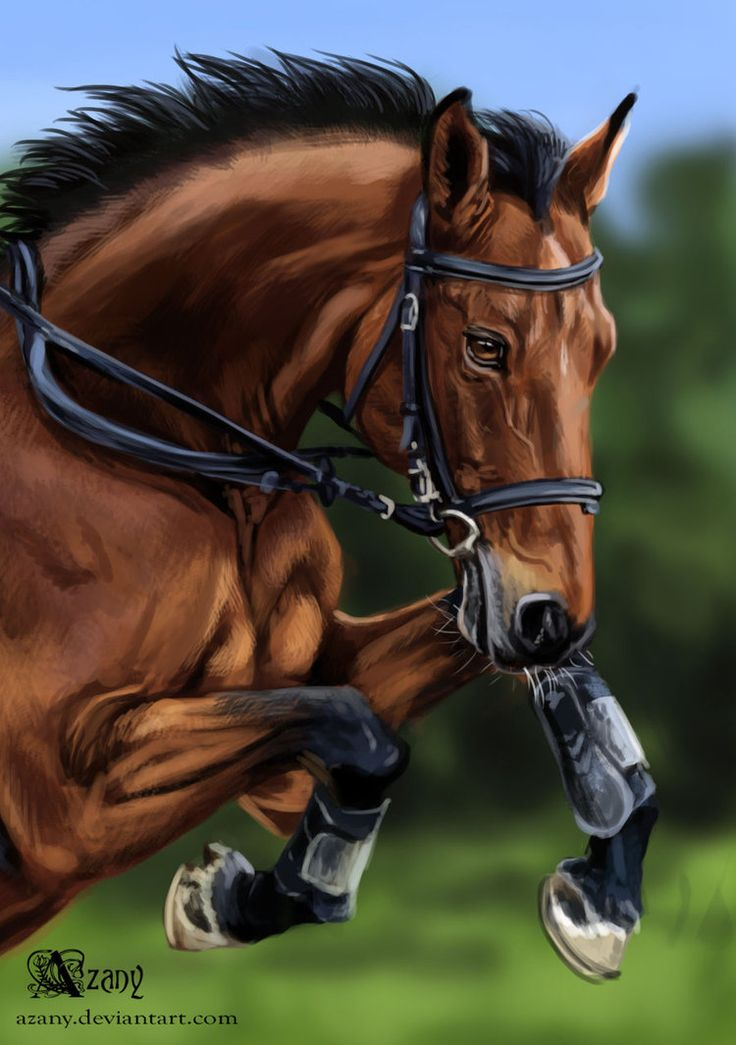 """For challenge """"10 horses for 10 days"""". 1 hour, Photoshop CS6 Drawn with a photo. Art (c) Azany"""