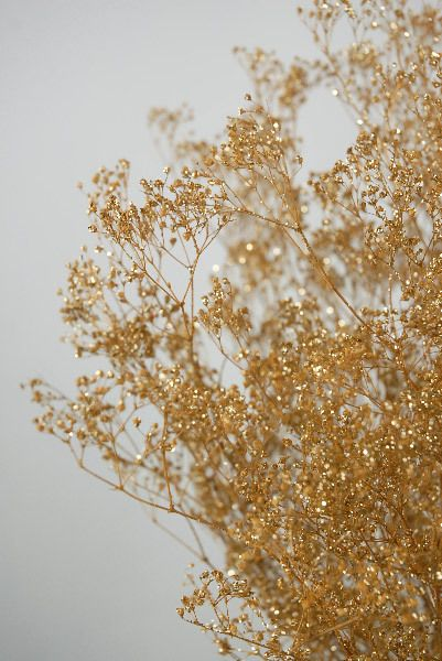 spray paint baby's breath gold glitter