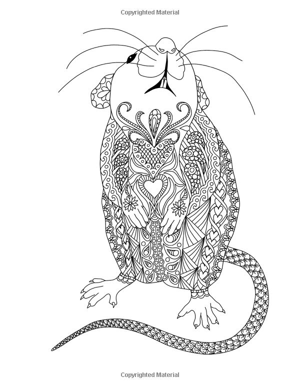 amazon doodle artist  fanciful rats a colouring