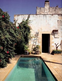 what a crisp, inviting, rectangular dipping pool in an old-feeling hacienda