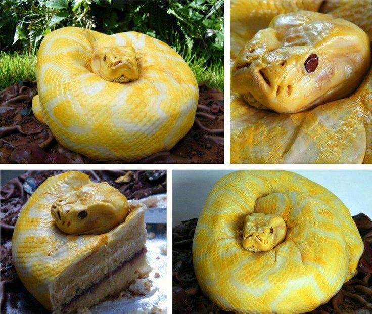 Amazing & Creative Snake Cake By North Star Cakes