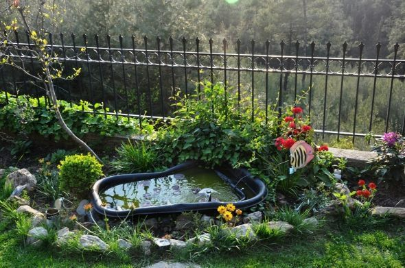 Building an above ground pond related pictures how to for How to build a fish pond above ground