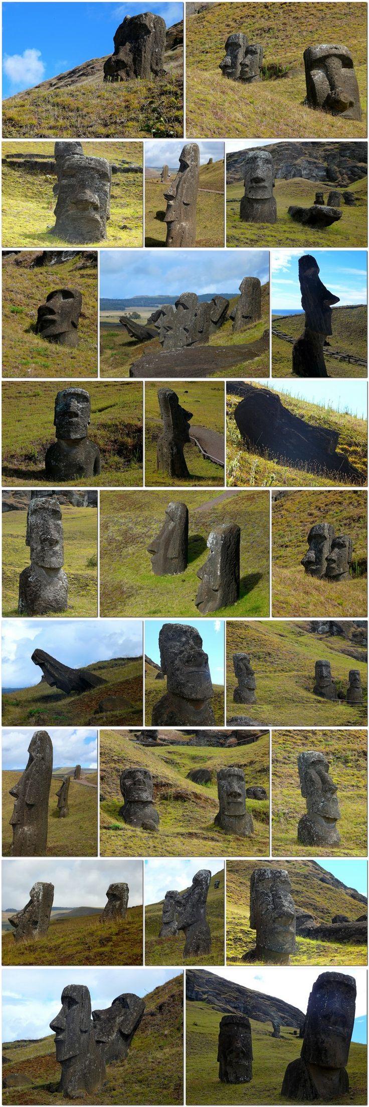 887 Statues Moai (dont 288 érigées, 92 en cours de transport et 397 dans la carrière) - datées entre 500 à 800 ap J.C. Scultées dans du tuf, issu principalement de la carrière de Rano Raraku. Leurs tailles varient de 1,13 à 9 mètres (21m60 pour une encore en fabrication), pour un poids moyen de 14 tonnes, jusqu'à 80 tonnes.