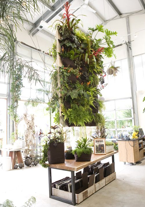 A Woolly Pocket installed in Flora Glub. What a stunning space for a vertical garden.