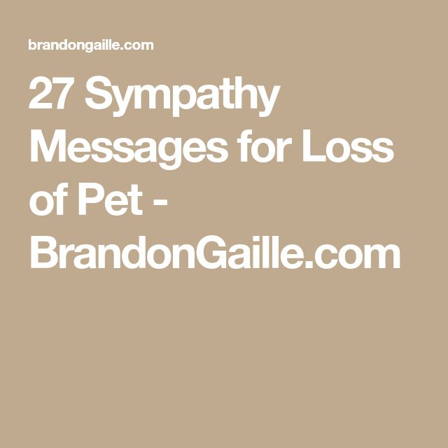 27 Sympathy Messages for Loss of Pet - BrandonGaille.com