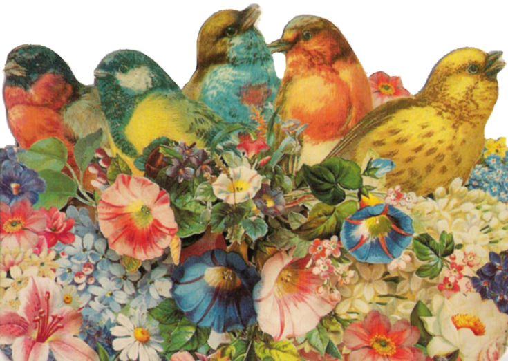 Vintage Birds by jinifur on DeviantArt