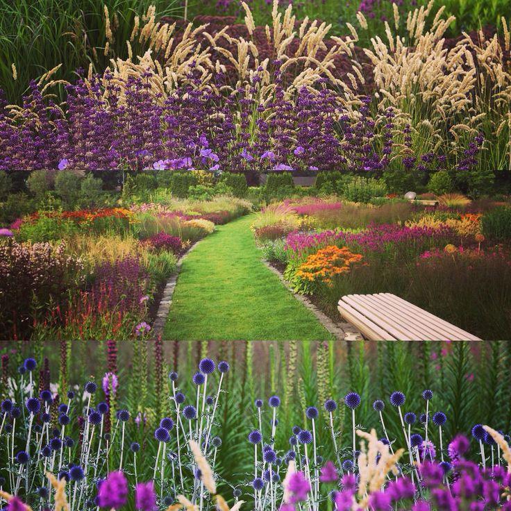 Vlinderhof maximapark utrecht design piet oudolf images for Planting the natural garden piet oudolf
