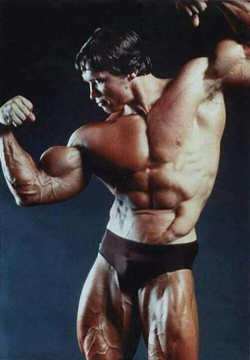 1000+ images about Arnold Schwarzenegger Bodybuilding on ...