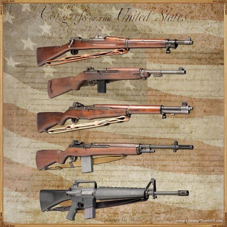 Pillars of Freedom.  Top to bottom: 1903-A3 Springfield; .30 caliber carbine; M-1 Garand; M-14; M-16.