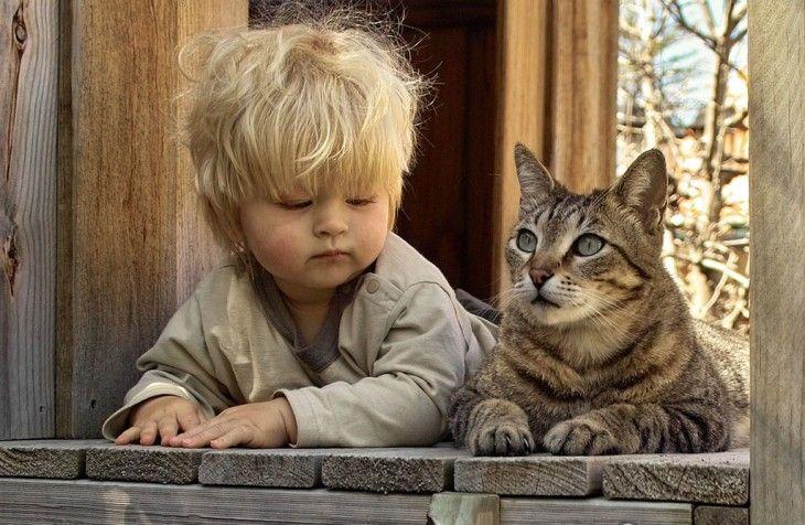 Niño acostado a un costado de un gato sobre madera