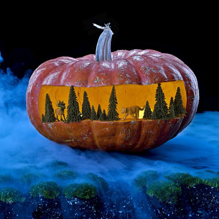Spooky diorama - Pumpkin Carving Ideas - Sunset