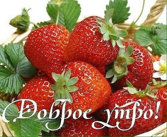 доброго утречка моя ягодка гиф оно