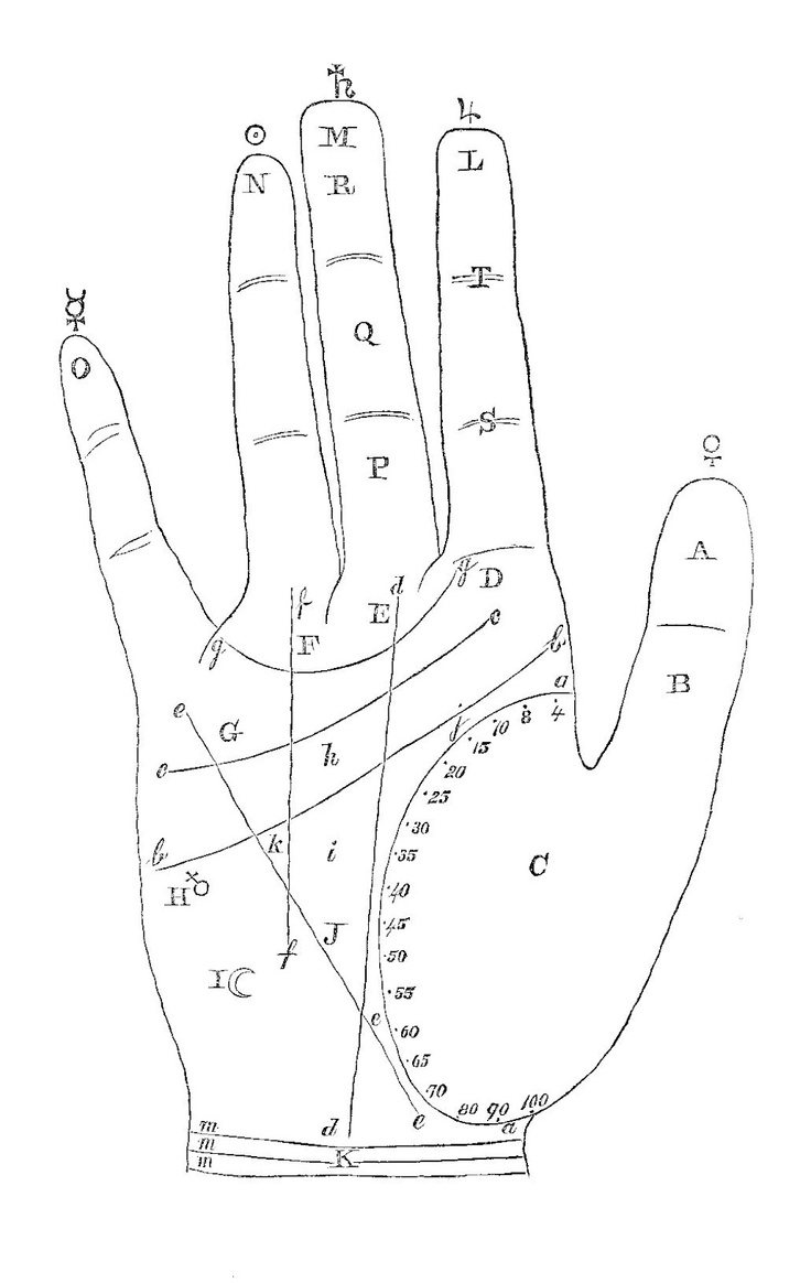 Vintage Palmistry Graphic: Cookies in your future...from The Cookie Fairy