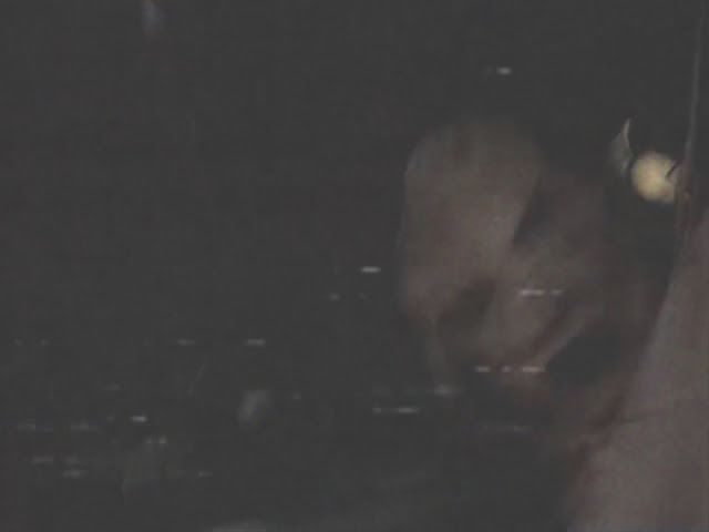 AWAKENING FOR ALL: Unidentified Creatures Caught on Tape